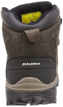 Arrière chaussure Dickies Medway
